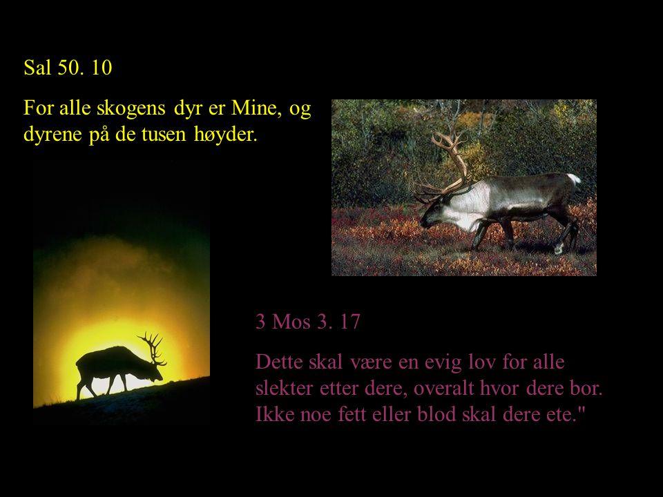 Sal 50. 10 For alle skogens dyr er Mine, og dyrene på de tusen høyder. 3 Mos 3. 17 Dette skal være en evig lov for alle slekter etter dere, overalt hv