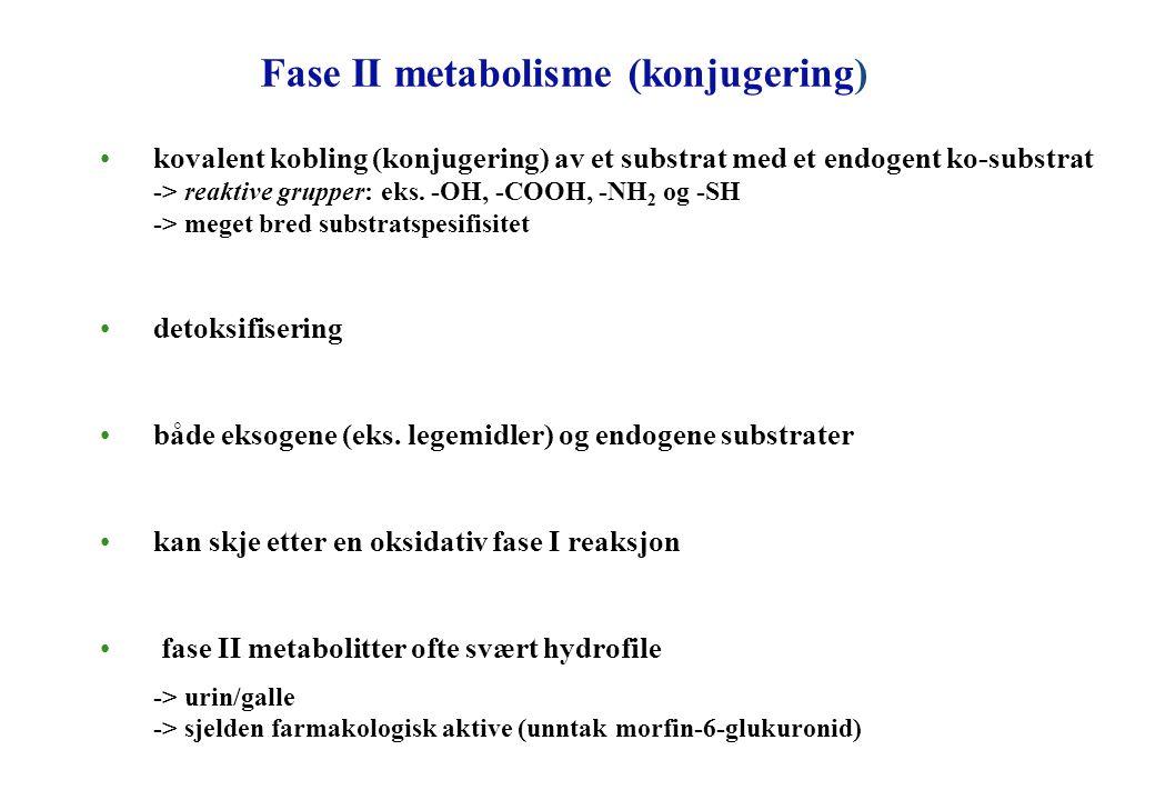 Fase II metabolisme (konjugering) kovalent kobling (konjugering) av et substrat med et endogent ko-substrat -> reaktive grupper: eks. -OH, -COOH, -NH