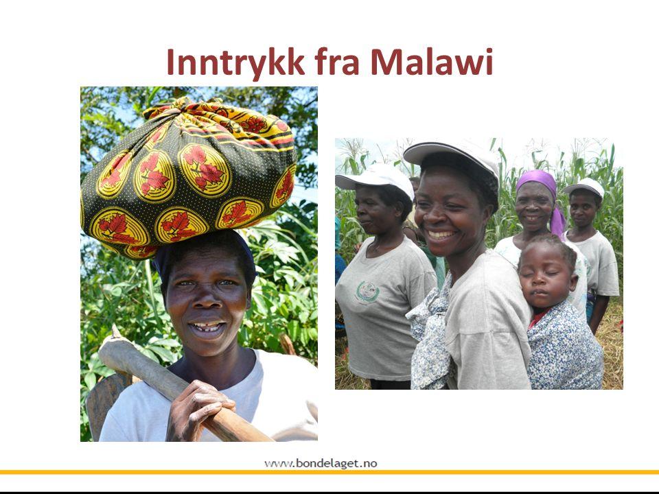 Inntrykk fra Malawi