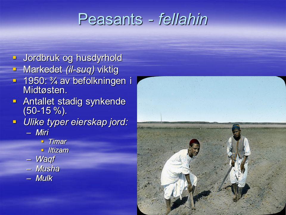 Peasants - fellahin  Jordbruk og husdyrhold  Markedet (il-suq) viktig  1950: ¾ av befolkningen i Midtøsten.  Antallet stadig synkende (50-15 %). 