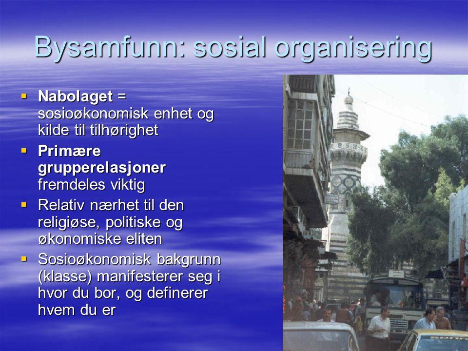 Bysamfunn: sosial organisering  Nabolaget = sosioøkonomisk enhet og kilde til tilhørighet  Primære grupperelasjoner fremdeles viktig  Relativ nærhe