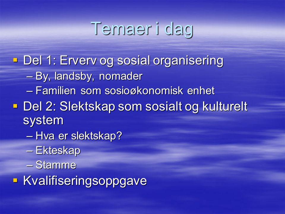 Temaer i dag  Del 1: Erverv og sosial organisering –By, landsby, nomader –Familien som sosioøkonomisk enhet  Del 2: Slektskap som sosialt og kulture