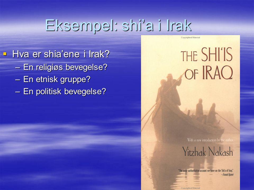 Eksempel: shi'a i Irak  Hva er shia'ene i Irak? –En religiøs bevegelse? –En etnisk gruppe? –En politisk bevegelse?