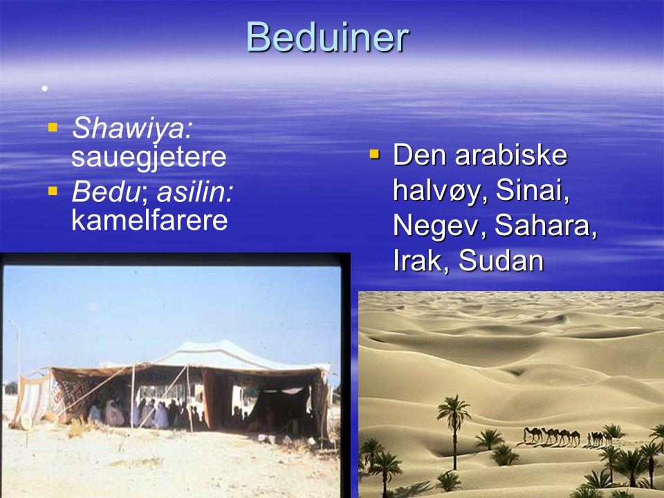 Beduiner: Livsgrunnlag   Pastoralisme – –Pasture, forflytninger for å gi dyra beite   Nomadisme, seminomadisme – –Bevegelse, forflytninger (uavhengig av dyrehold)   Salg/byttehandel   Militær kontroll/beskyttelse handelsruter