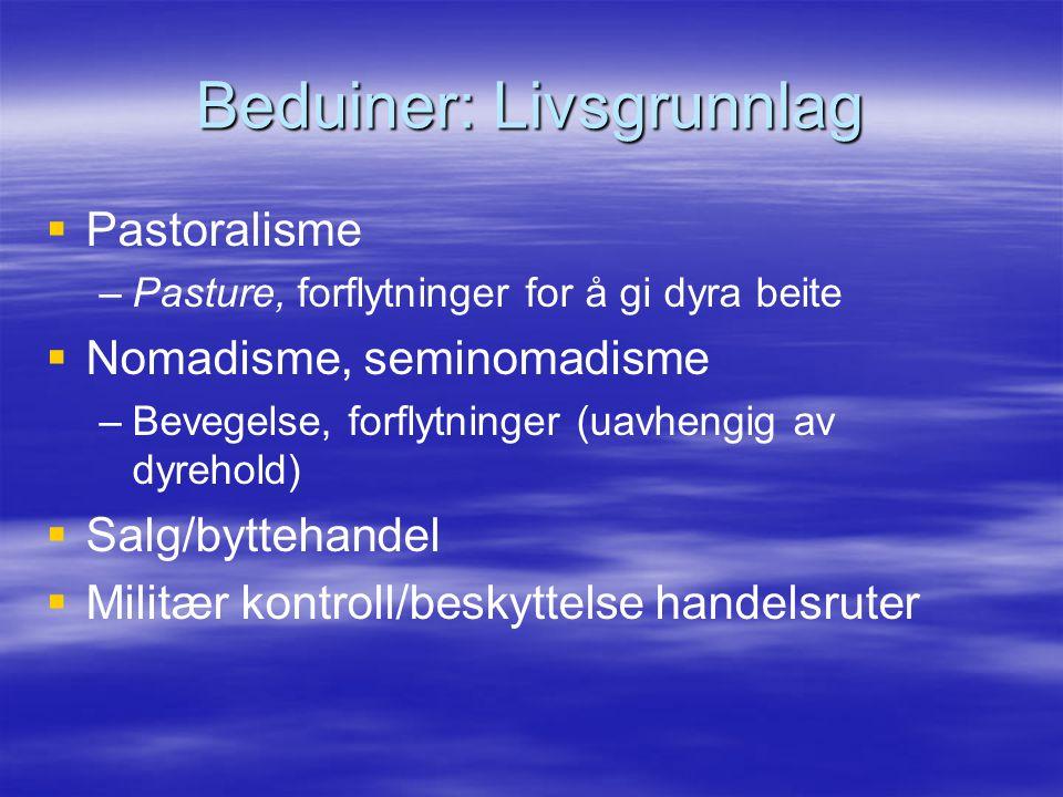 Beduiner: Livsgrunnlag   Pastoralisme – –Pasture, forflytninger for å gi dyra beite   Nomadisme, seminomadisme – –Bevegelse, forflytninger (uavhen