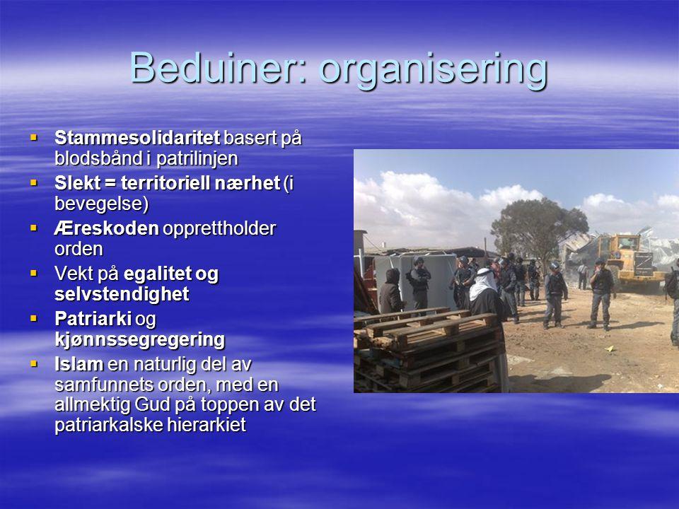 Beduiner: organisering  Stammesolidaritet basert på blodsbånd i patrilinjen  Slekt = territoriell nærhet (i bevegelse)  Æreskoden opprettholder ord