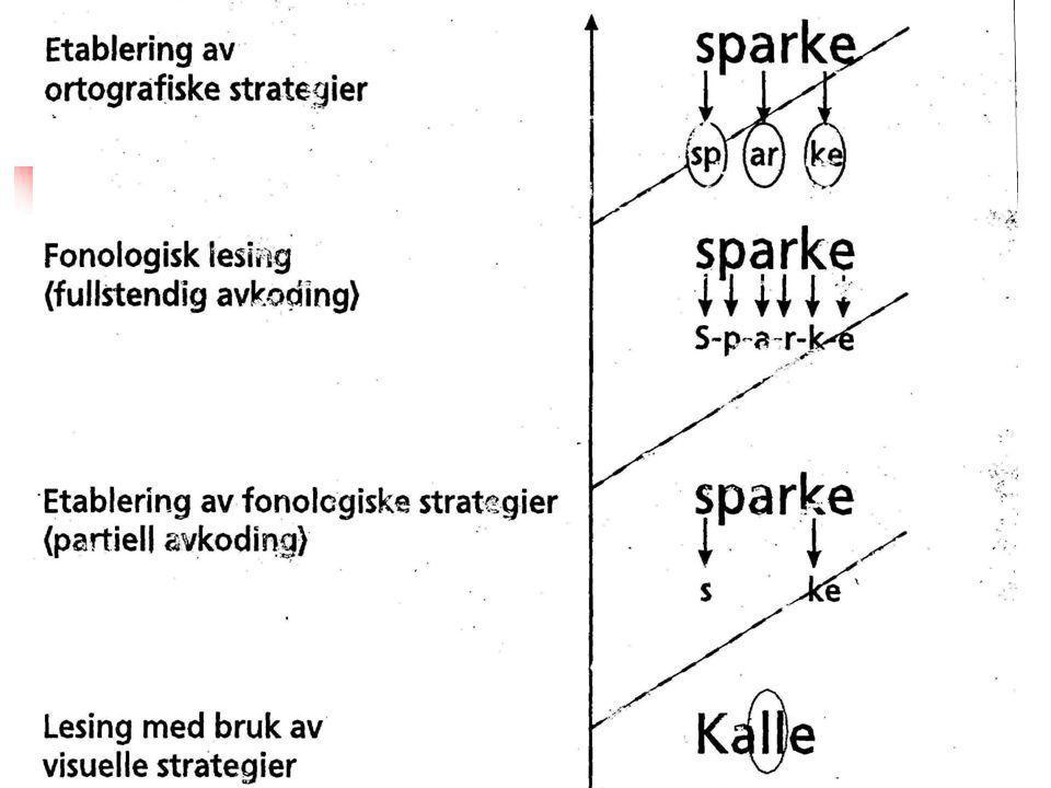 Fonologisk lesing med semantisk støtte H-hæ..rm..a…n.hærman har ma…n-ge- kose-hunner - …i… ste…den-isteden –de..st-å…r på hyll…la o..v-åver sen…ga senga