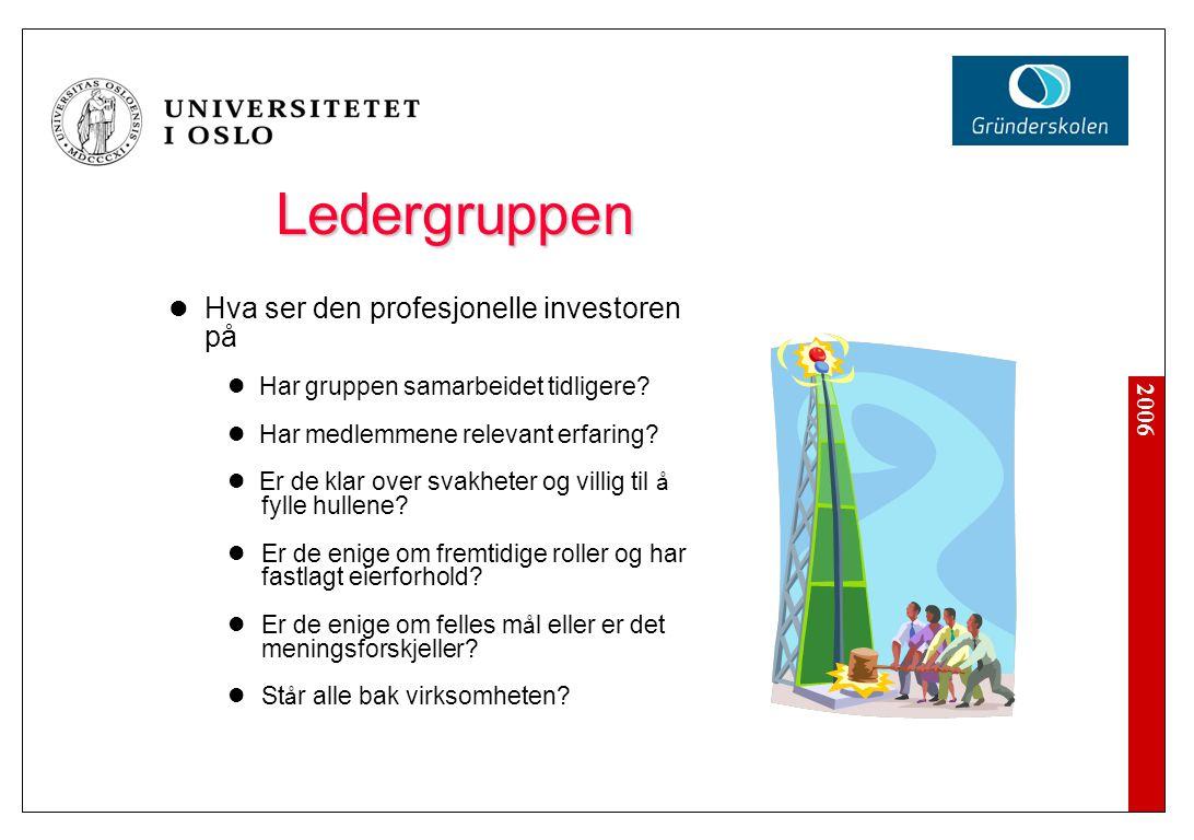 2006 Ledergruppen Hva ser den profesjonelle investoren på Har gruppen samarbeidet tidligere? Har medlemmene relevant erfaring? Er de klar over svakhet