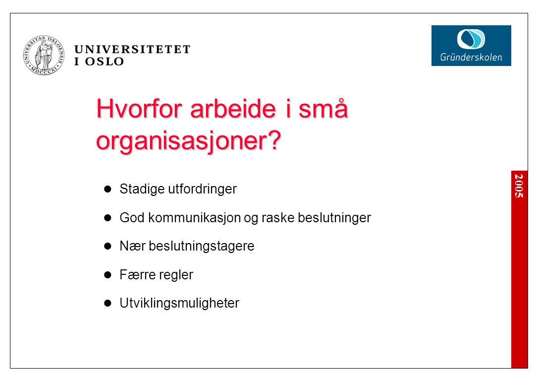 2005 Hvorfor arbeide i små organisasjoner? Stadige utfordringer God kommunikasjon og raske beslutninger Nær beslutningstagere Færre regler Utviklingsm