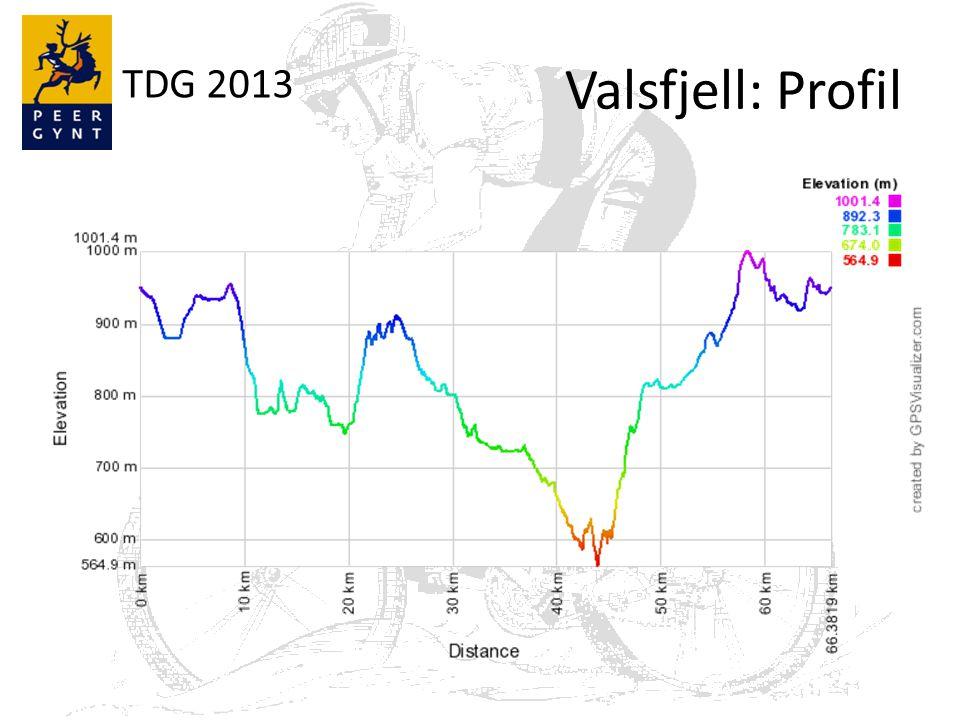 TDG 2013 Valsfjell: Profil
