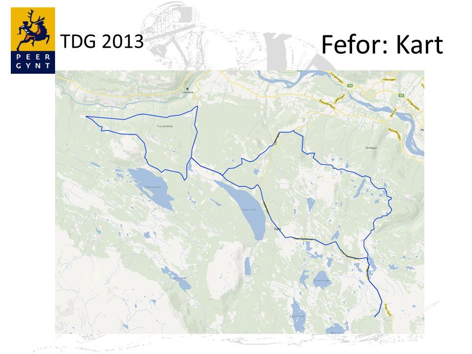 TDG 2013 Fefor: Kart