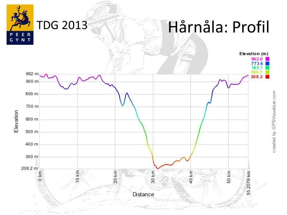 TDG 2013 Hårnåla: Profil