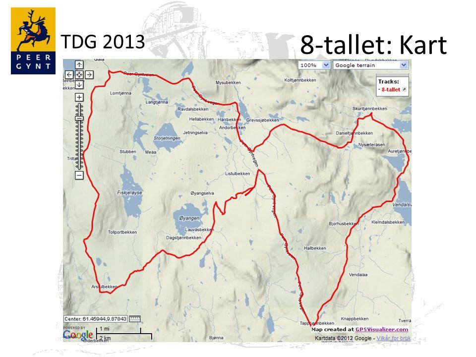 TDG 2013 8-tallet: Profil