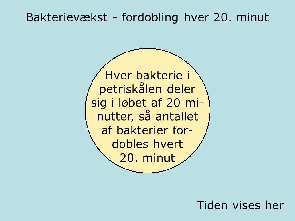 Bakterievækst - fordobling hver 20. minut Kl. 00.00