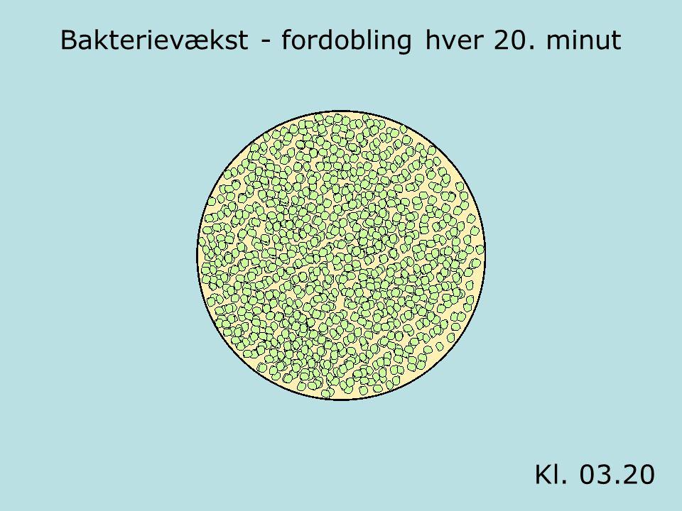 Bakterievækst - fordobling hver 20. minut Kl. 03.20
