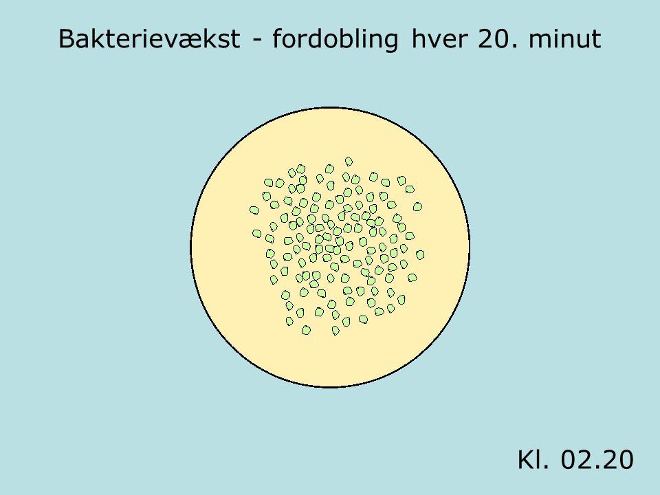 Bakterievækst - fordobling hver 20. minut Kl. 02.40