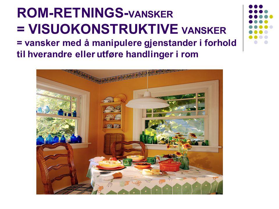 ROM-RETNINGS- VANSKER = VISUOKONSTRUKTIVE VANSKER = vansker med å manipulere gjenstander i forhold til hverandre eller utføre handlinger i rom