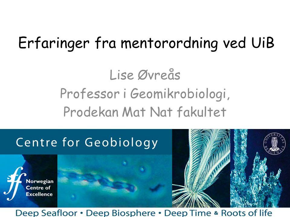 Erfaringer fra mentorordning ved UiB Lise Øvreås Professor i Geomikrobiologi, Prodekan Mat Nat fakultet