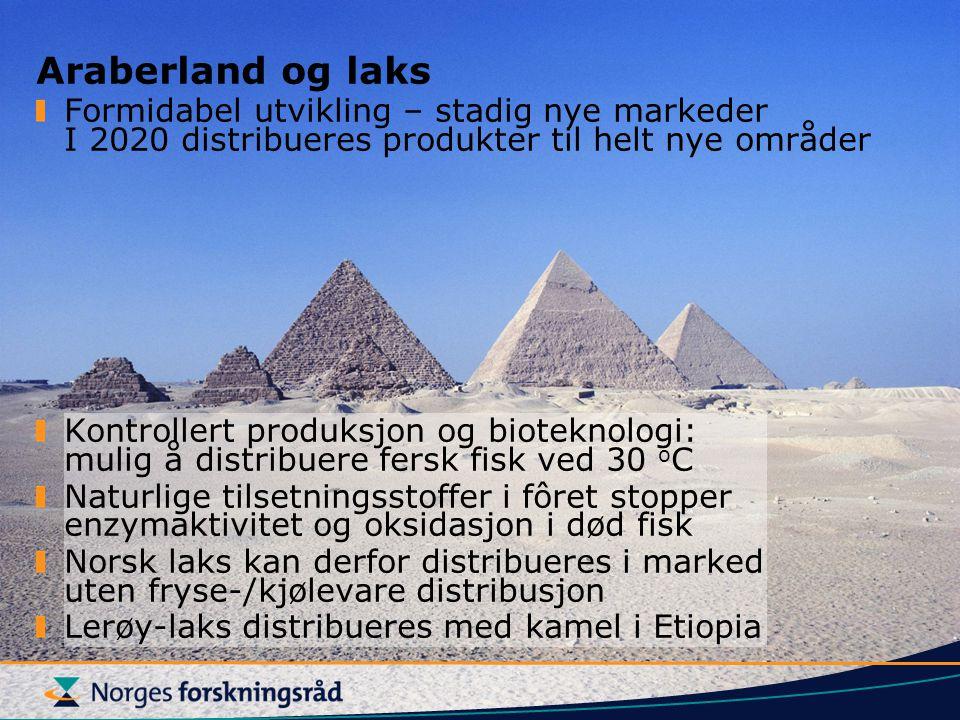 Araberland og laks Formidabel utvikling – stadig nye markeder I 2020 distribueres produkter til helt nye områder Kontrollert produksjon og bioteknolog