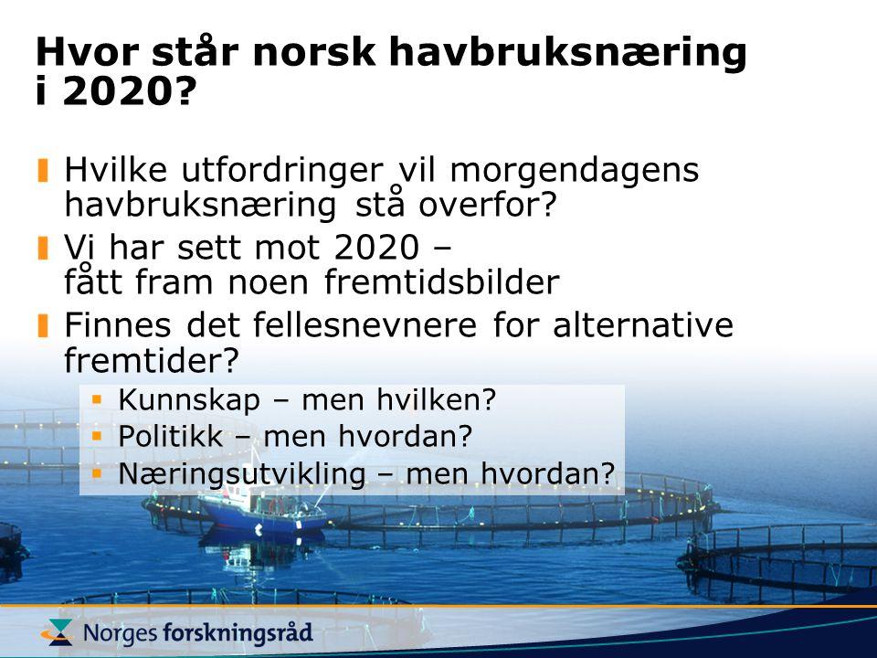 Hvor står norsk havbruksnæring i 2020? Hvilke utfordringer vil morgendagens havbruksnæring stå overfor? Vi har sett mot 2020 – fått fram noen fremtids