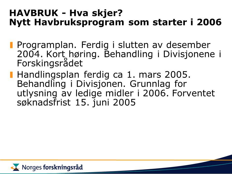 HAVBRUK - Hva skjer? Nytt Havbruksprogram som starter i 2006 Programplan. Ferdig i slutten av desember 2004. Kort høring. Behandling i Divisjonene i F
