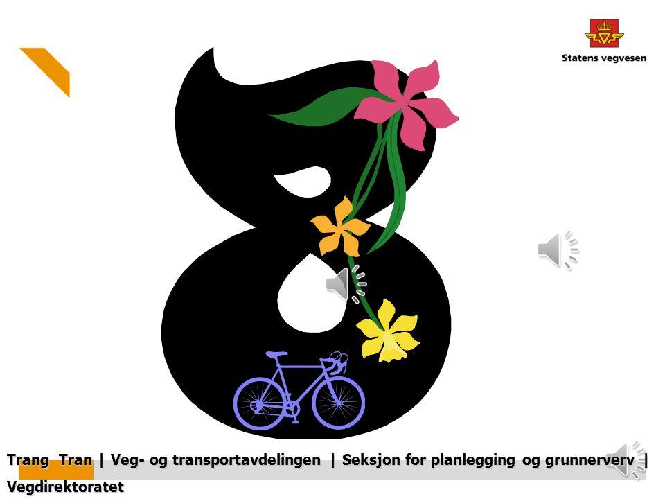 Trang Tran | Veg- og transportavdelingen | Seksjon for planlegging og grunnerverv | Vegdirektoratet