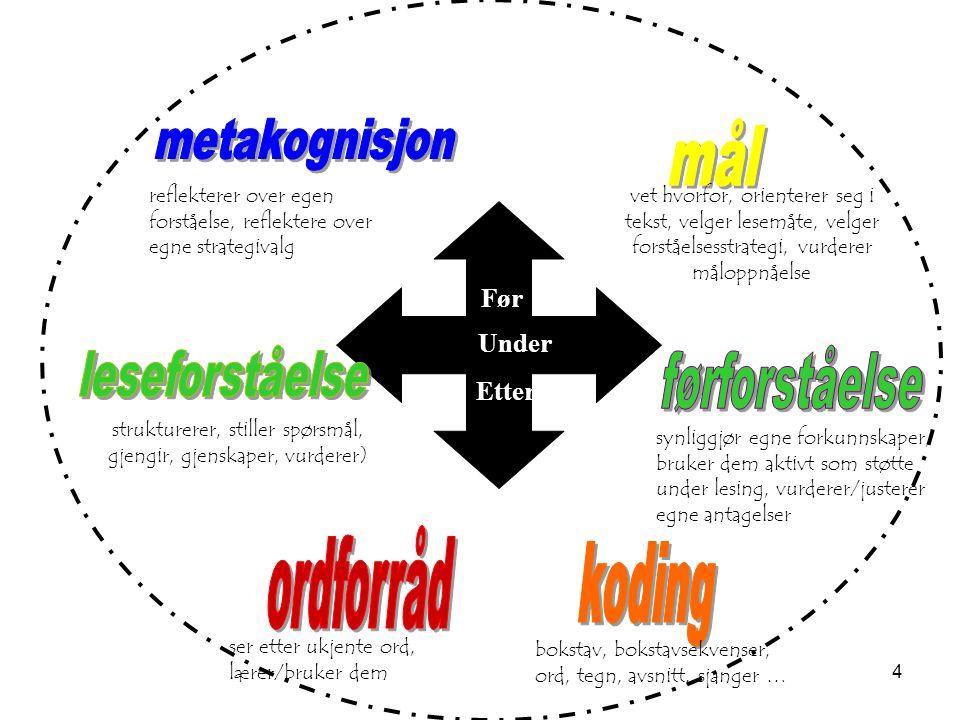 4 strukturerer, stiller spørsmål, gjengir, gjenskaper, vurderer) vet hvorfor, orienterer seg i tekst, velger lesemåte, velger forståelsesstrategi, vur