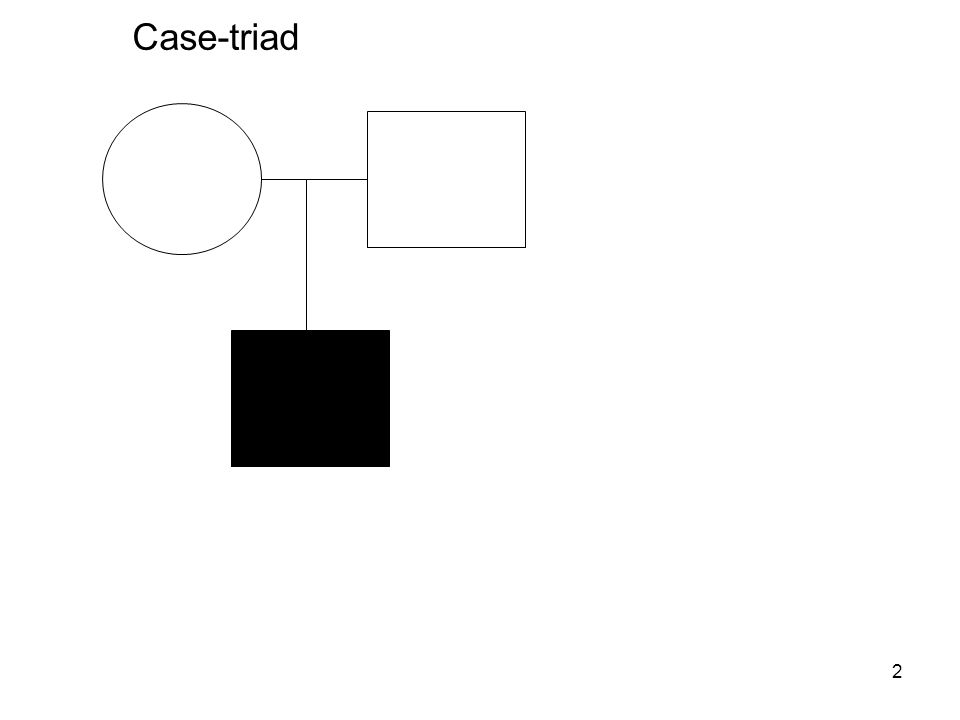 2 Case-triad