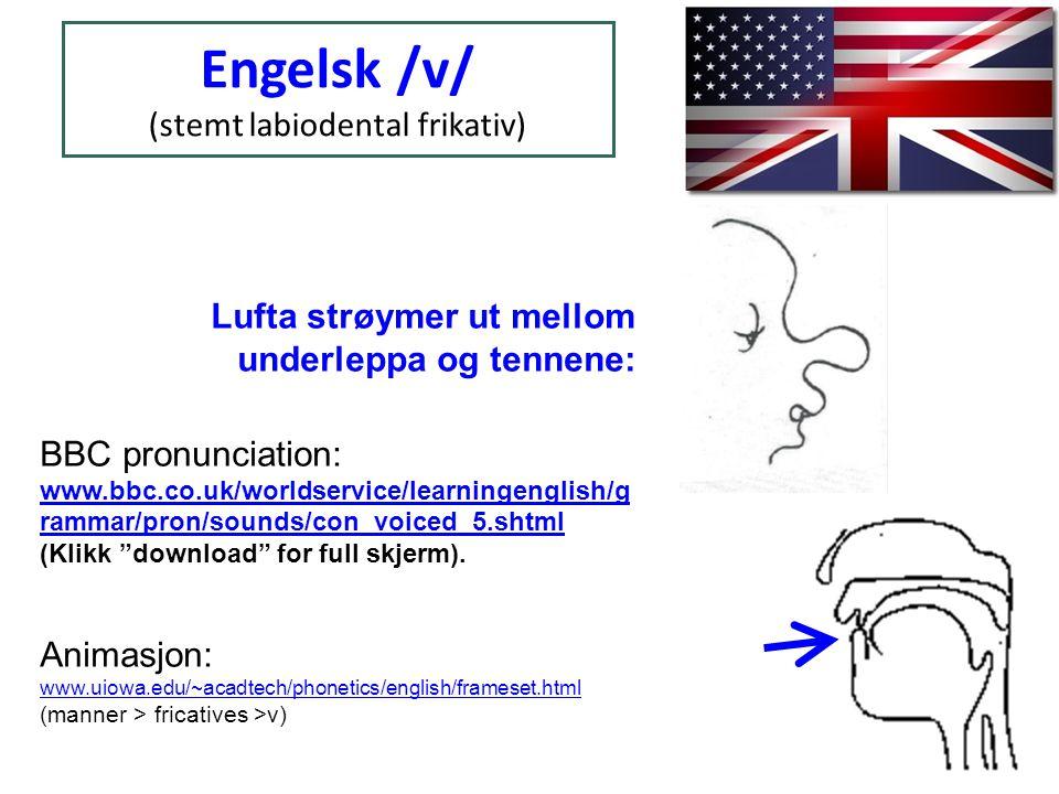 Vi øvar på engelsk /w/