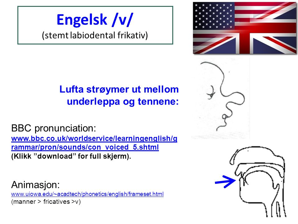 Sjå uttalen av ordet vat : www.soundsofenglish.org/pro nunciation/video/vvat.mpg