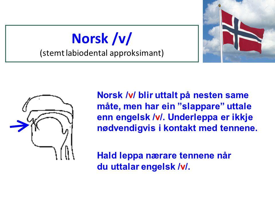 Norsk /v/ (stemt labiodental approksimant) Norsk /v/ blir uttalt på nesten same måte, men har ein slappare uttale enn engelsk /v/.
