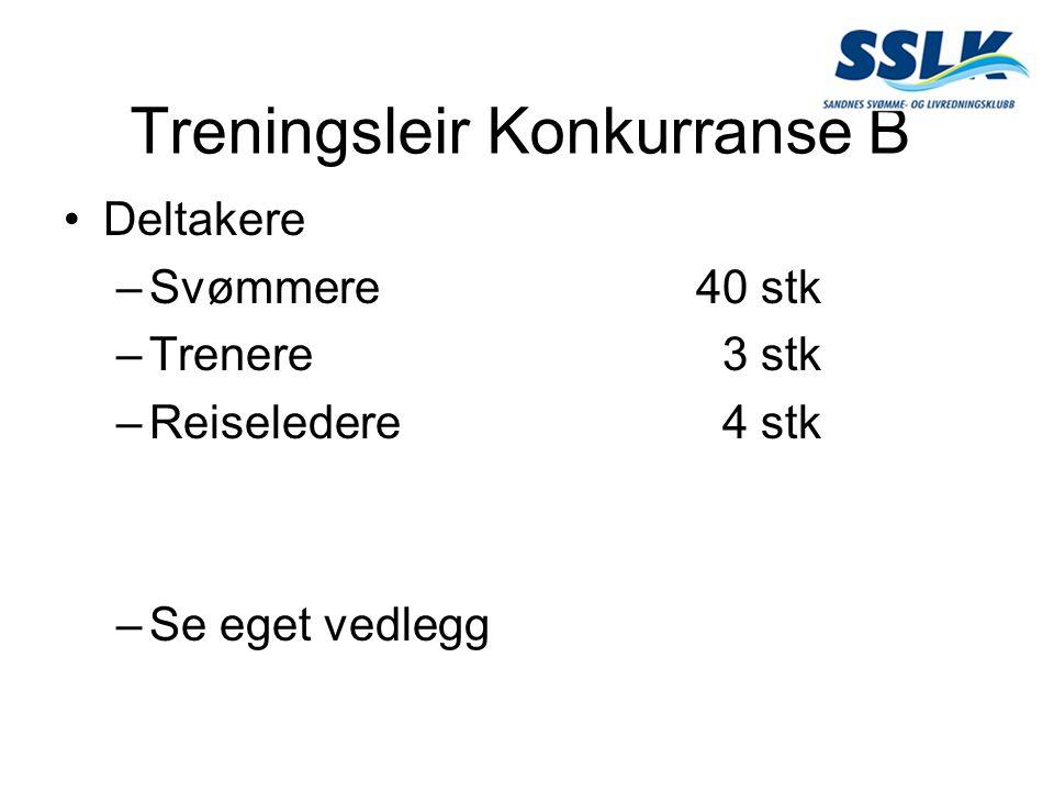 Treningsleir Konkurranse B Deltakere –Svømmere40 stk –Trenere 3 stk –Reiseledere 4 stk –Se eget vedlegg