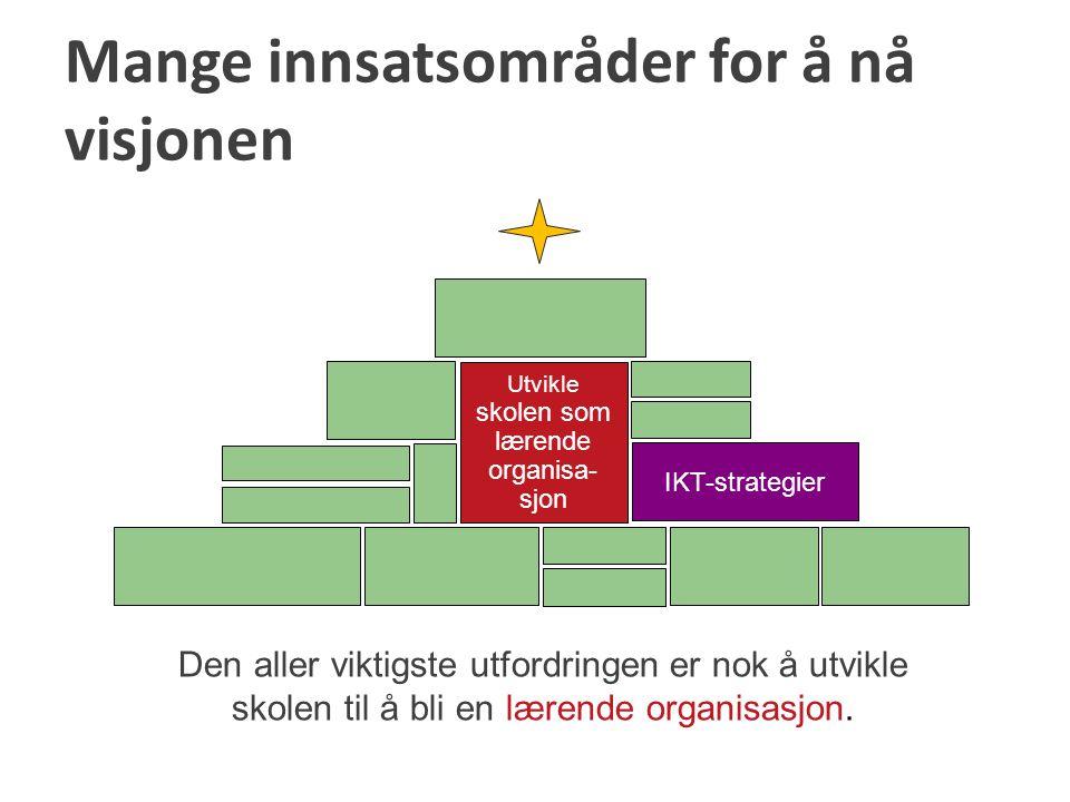 Utvikle skolen som lærende organisa- sjon IKT-strategier Mange innsatsområder for å nå visjonen Den aller viktigste utfordringen er nok å utvikle skol