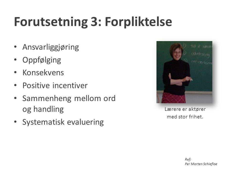 Forutsetning 3: Forpliktelse Ansvarliggjøring Oppfølging Konsekvens Positive incentiver Sammenheng mellom ord og handling Systematisk evaluering Ref: Per Morten Schiefloe Lærere er aktører med stor frihet.