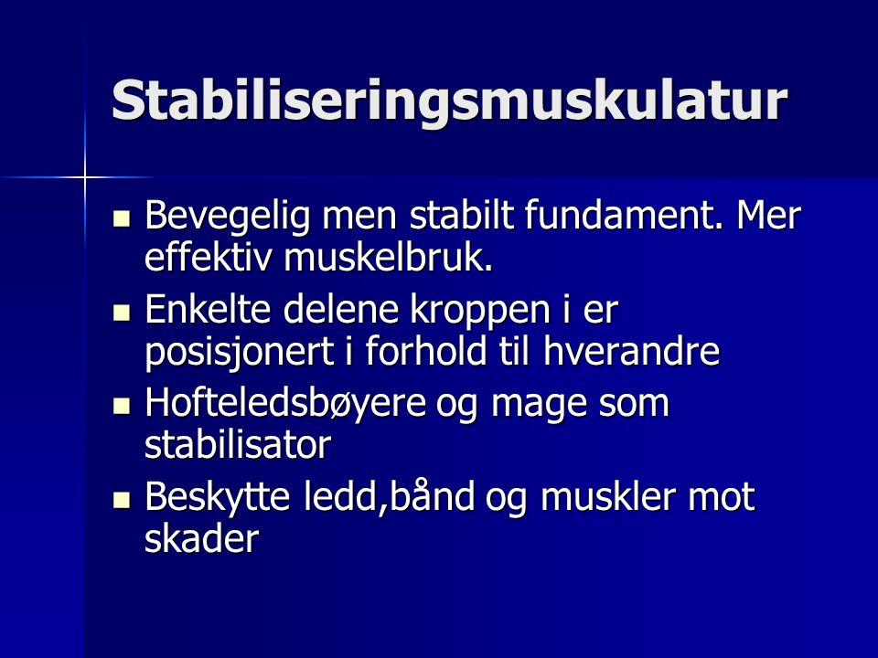 Stabiliseringsmuskulatur Bevegelig men stabilt fundament. Mer effektiv muskelbruk. Bevegelig men stabilt fundament. Mer effektiv muskelbruk. Enkelte d