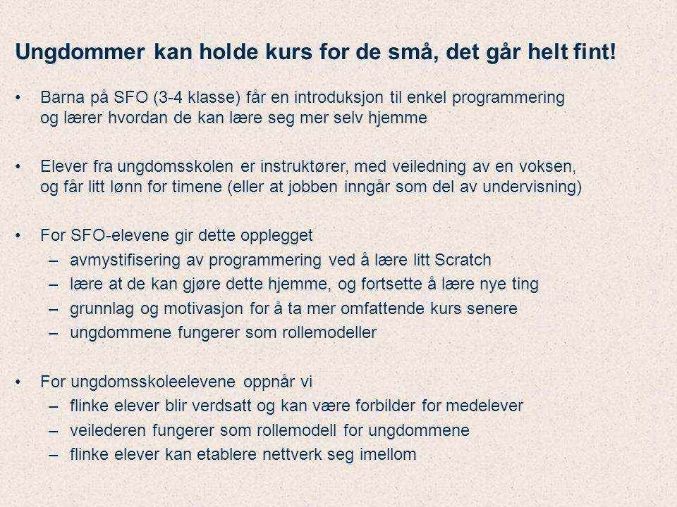 Hva koster kurs for Oslos 4.-klassinger.Anta –veiledning fra frivillige (evt.