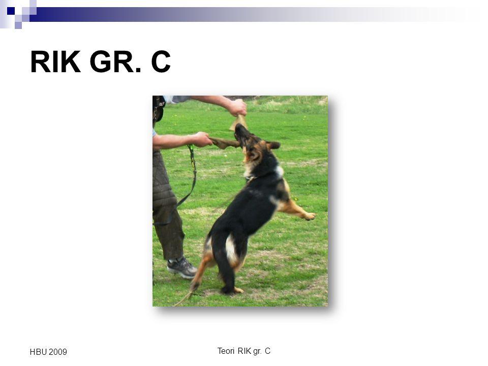 Teori RIK gr. C HBU 2009 RIK GR. C