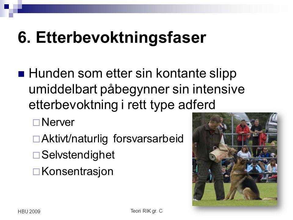 6. Etterbevoktningsfaser Hunden som etter sin kontante slipp umiddelbart påbegynner sin intensive etterbevoktning i rett type adferd  Nerver  Aktivt