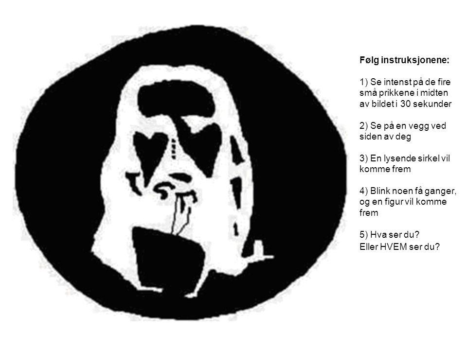 Følg instruksjonene: 1) Se intenst på de fire små prikkene i midten av bildet i 30 sekunder 2) Se på en vegg ved siden av deg 3) En lysende sirkel vil