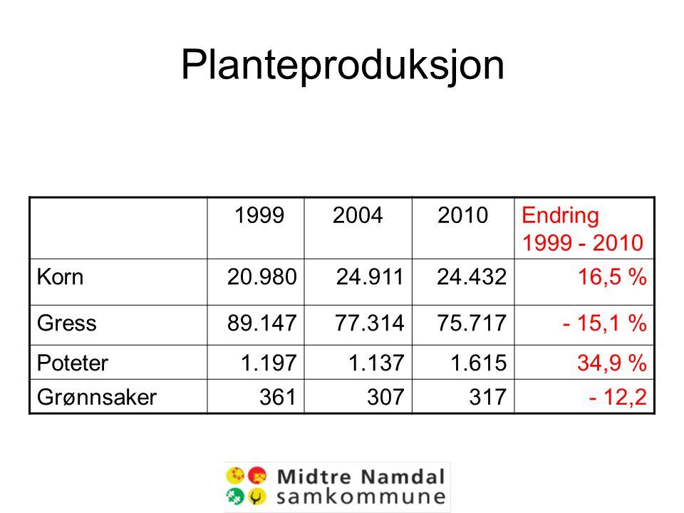 Planteproduksjon 199920042010Endring 1999 - 2010 Korn20.98024.91124.43216,5 % Gress89.14777.31475.717- 15,1 % Poteter1.1971.1371.61534,9 % Grønnsaker361307317- 12,2