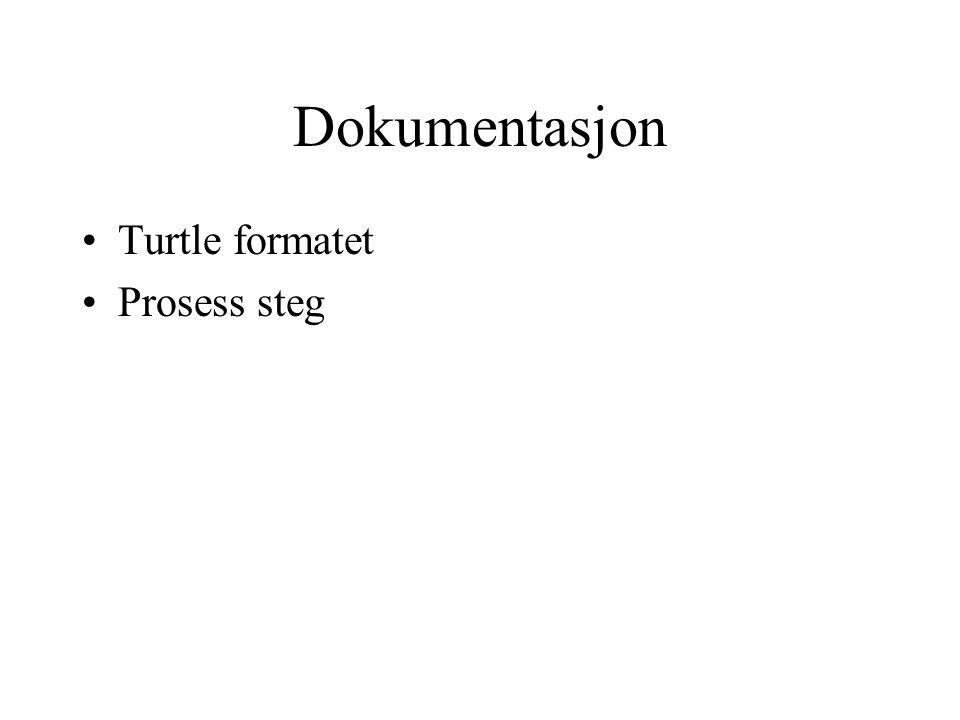 Dokumentasjon Turtle formatet Prosess steg