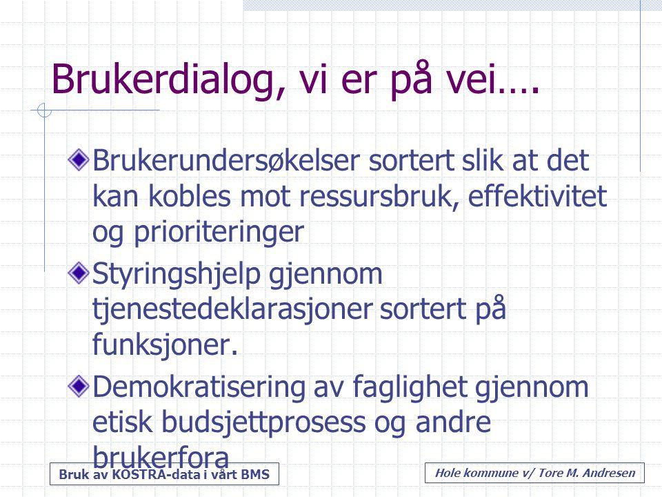 Bruk av KOSTRA-data i vårt BMS Hole kommune v/ Tore M.