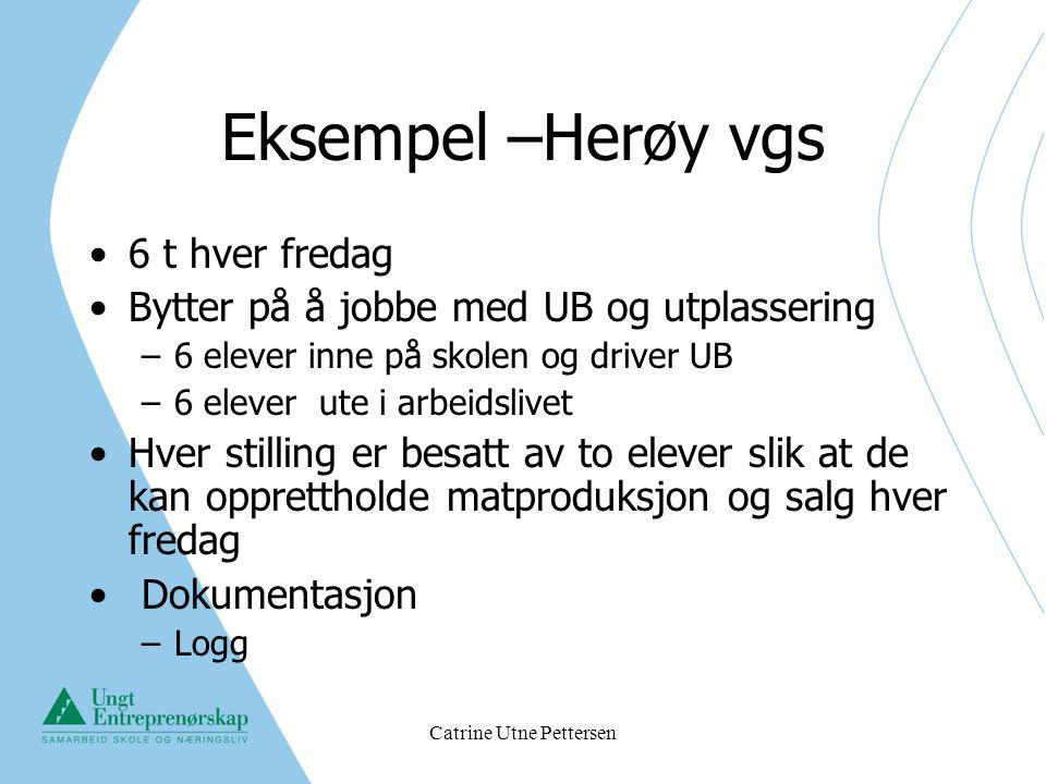 Catrine Utne Pettersen Eksempel –Herøy vgs 6 t hver fredag Bytter på å jobbe med UB og utplassering –6 elever inne på skolen og driver UB –6 elever ut