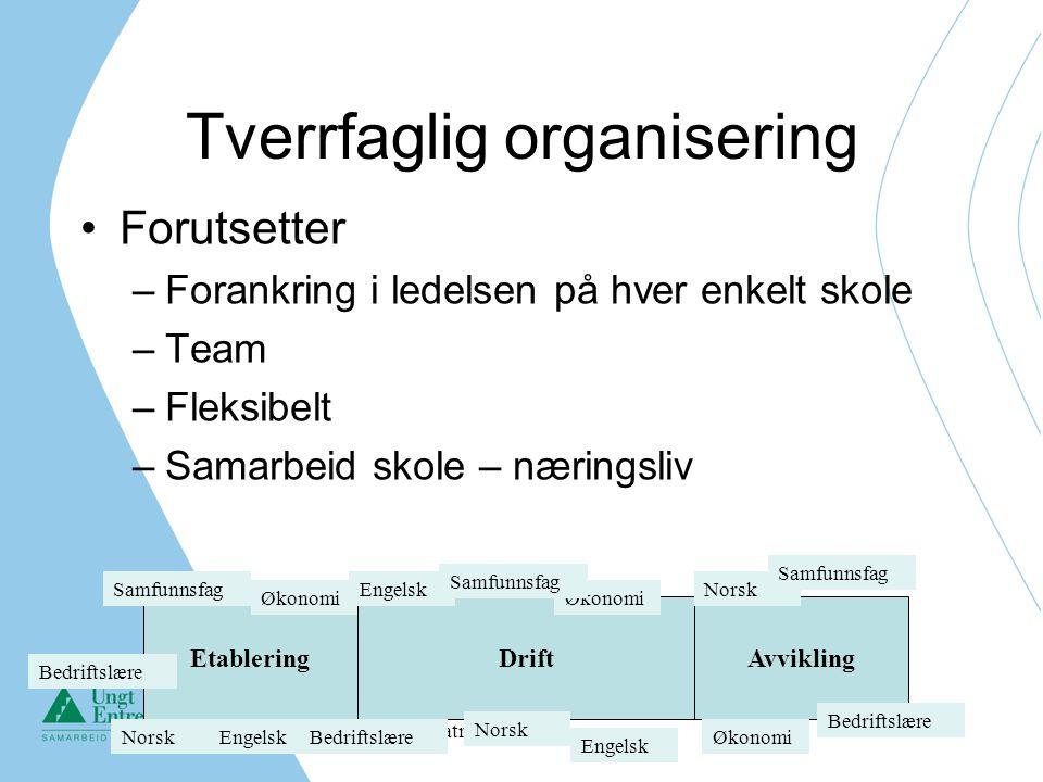 Catrine Utne Pettersen Tverrfaglig organisering Forutsetter –Forankring i ledelsen på hver enkelt skole –Team –Fleksibelt –Samarbeid skole – næringsli