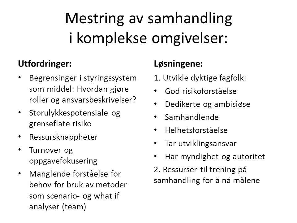 Mestring av samhandling i komplekse omgivelser: Utfordringer: Begrensinger i styringssystem som middel: Hvordan gjøre roller og ansvarsbeskrivelser.