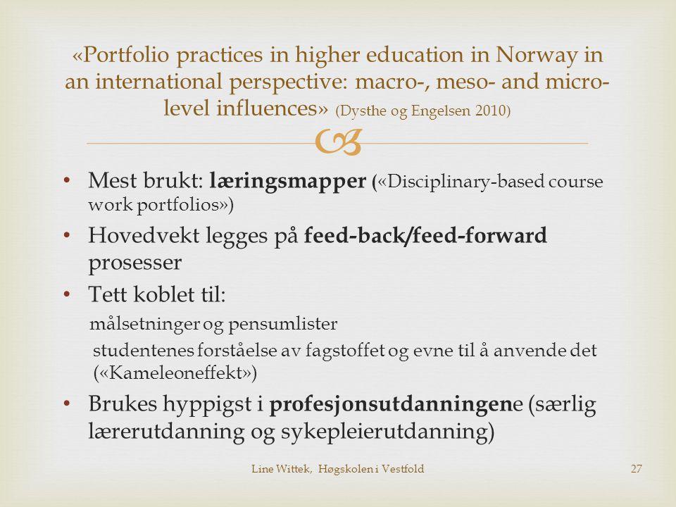  Mest brukt: læringsmapper ( «Disciplinary-based course work portfolios») Hovedvekt legges på feed-back/feed-forward prosesser Tett koblet til: målse