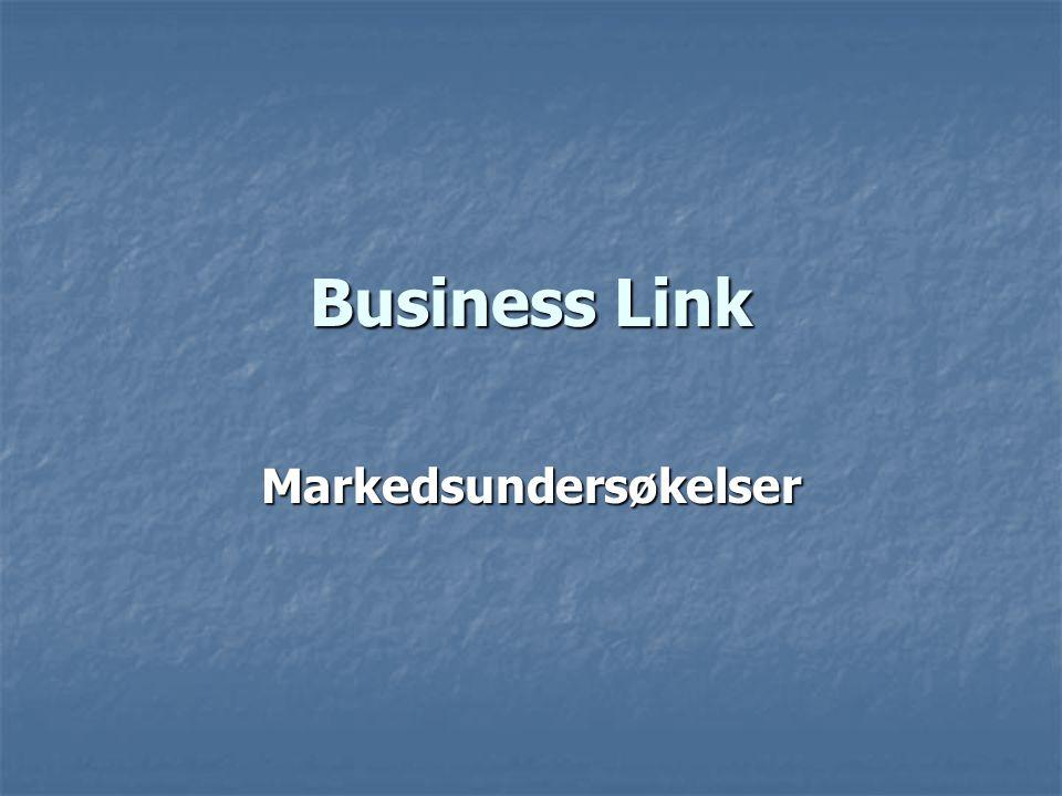 Business Link Markedsundersøkelser