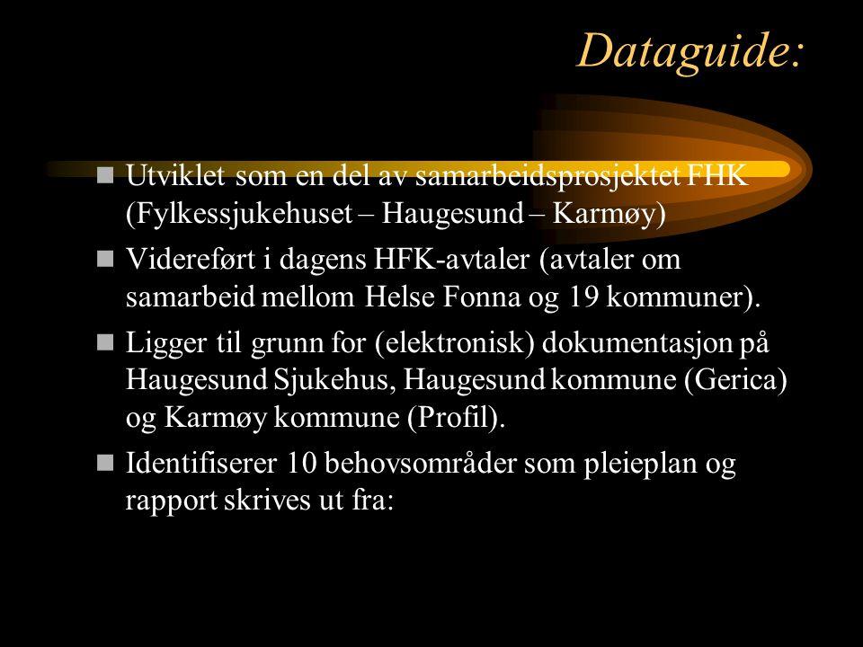 Dataguide: Utviklet som en del av samarbeidsprosjektet FHK (Fylkessjukehuset – Haugesund – Karmøy) Videreført i dagens HFK-avtaler (avtaler om samarbe