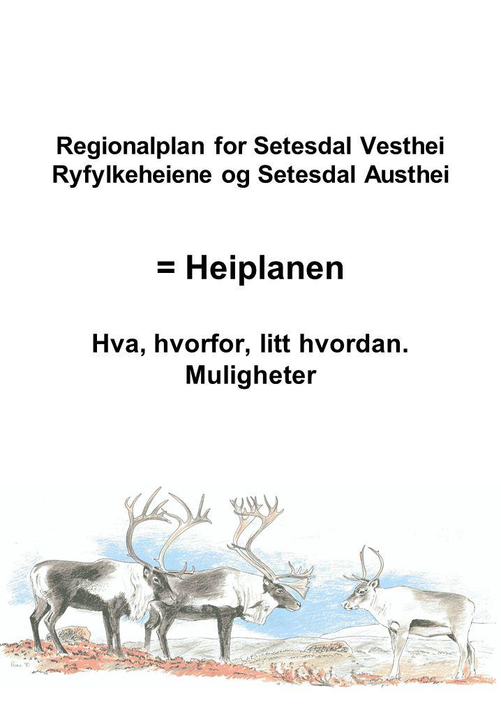 Regionalplan for Setesdal Vesthei Ryfylkeheiene og Setesdal Austhei = Heiplanen Hva, hvorfor, litt hvordan.
