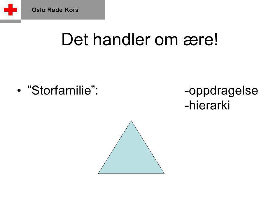 Det handler om ære! Storfamilie :-oppdragelse -hierarki Oslo Røde Kors